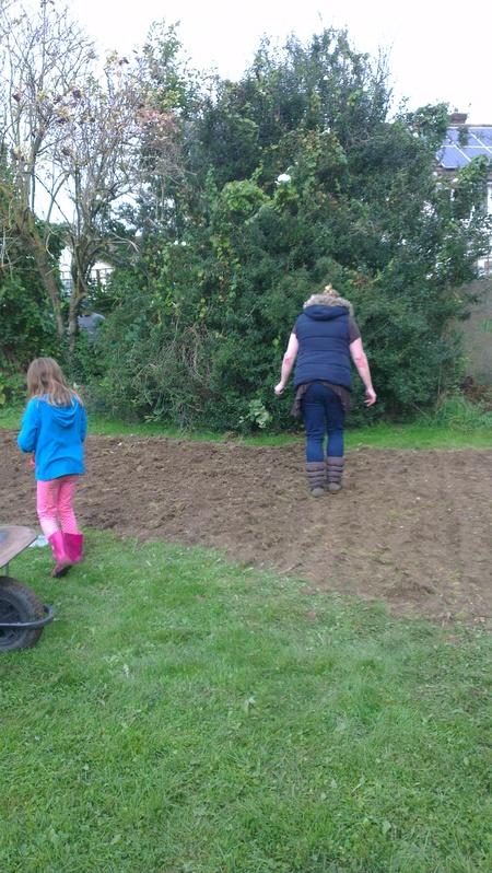 Preparing ground for wild flower seeds